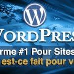 Site Internet Wordpress, est-ce fait pour vous?